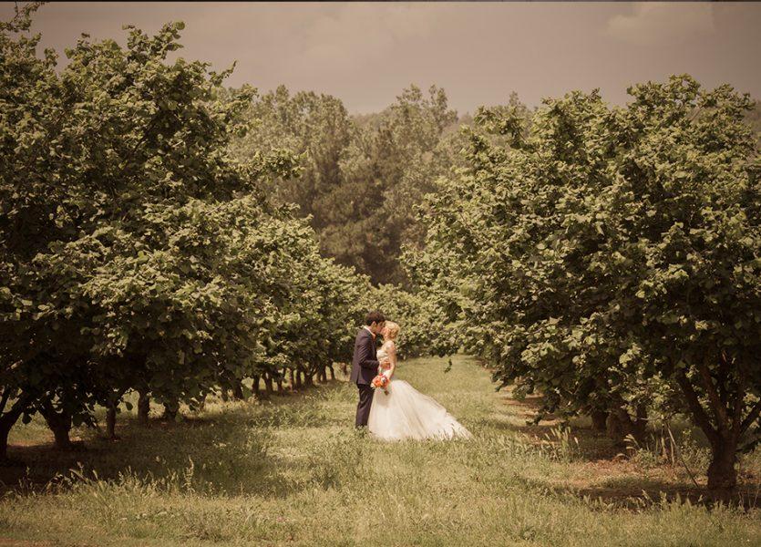Boda entre manzanos